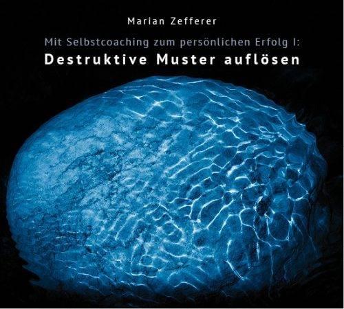 bildungsserver Titelbild NLP online Seminare mit Marian Zefferer