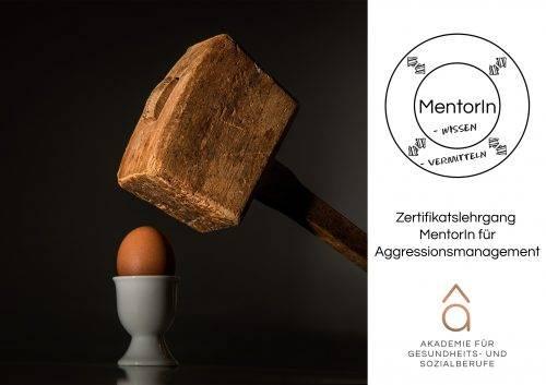 bildungsserver Titelbild Zertifikatslehrgang: MentorIn für Aggressionsmanagement