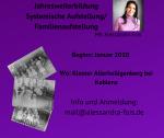 bildungsserver Titelbild Weiterbildung / Ausbildung Familienaufstellung - Systemische Aufstellung